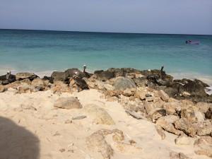 De zee op het eiland Aruba